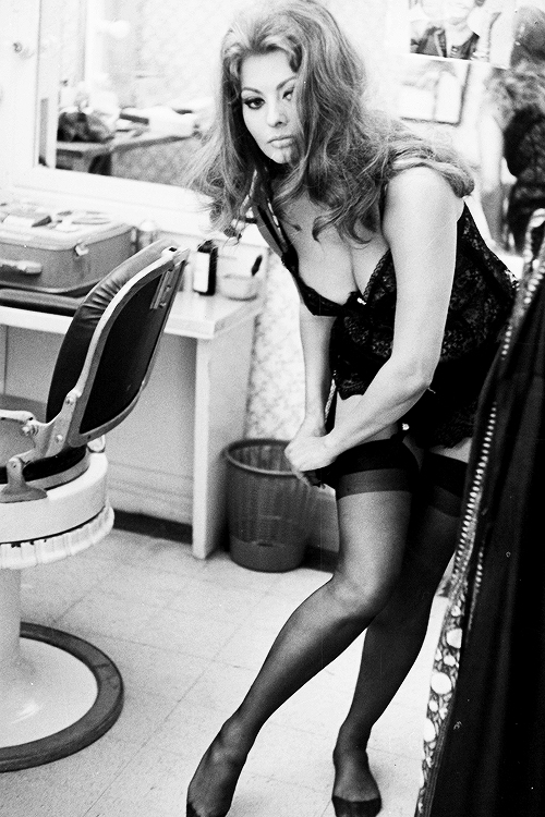 sophia loren black beauty 3