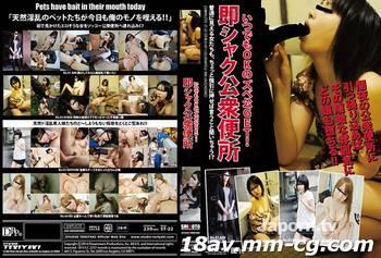 (ST-22) SHI6OTO Vol.22 素人公眾便所
