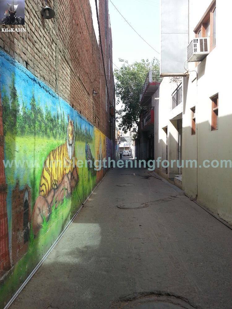 indira alley 1